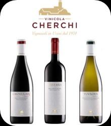 Cantina Vinicola Cherchi